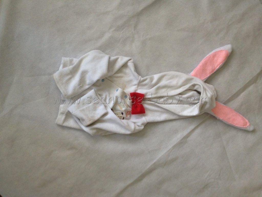 deifraz de conejo